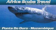 Africa Scuba Travel: Click Here
