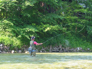 Fly_Fishing_Great_Smoky_Mountain_National_Park.jpg