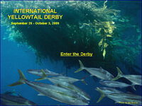 International Yellowtail Derby: Click Here