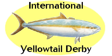 Yellowtail Derby 2010: Click Here
