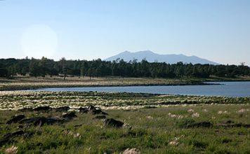 Ashurst Lake