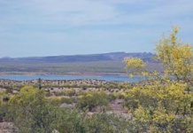 Alamo Lake Arizona In The Spring Photo By Margie Anderson