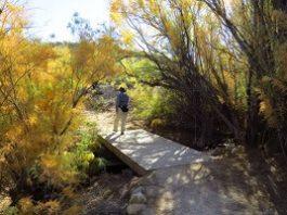 Arizona Premier Trails System