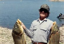 Carp at Roosevelt Lake