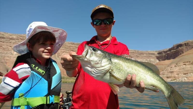 Lake powell stripers are in transition azbw for Lake powell fishing
