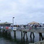 IGFA Youth Tournament Shelter Island Pier