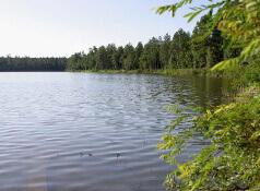 Show Low Lake