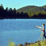Fishing Green Light