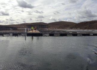Scorpion Bay Marina's New Dock E