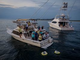Black Marlin Wins