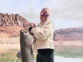 Lake Powell Big Fish