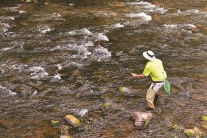 Arizona Free Fishing