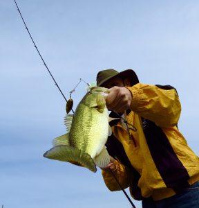 AZ Lakes, AZ Pros: AZ Lakes, AZ Pros Dave Prothe At Roosevelt