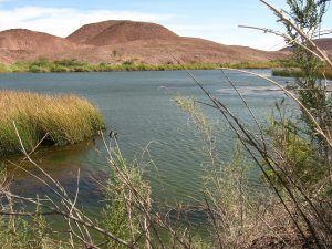 Martinez Lake