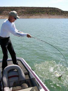 AZ Lakes, AZ Pros  Crankbait Time Is Here Again